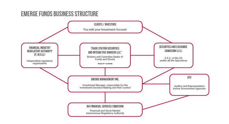 EFI.-Business-Structure